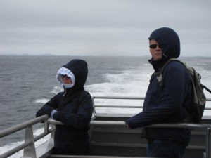 Cold Boston Whale Watching